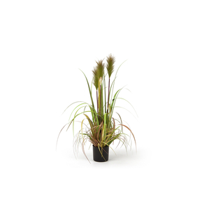 Carrizo artificial plant